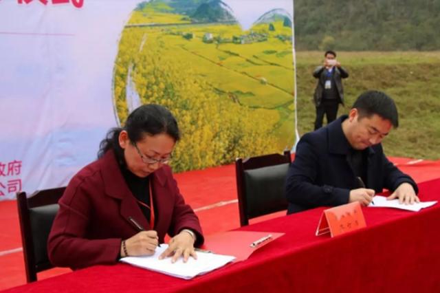 六枝举办爱心油菜花节: 爱心扶贫订单 签了4200余万
