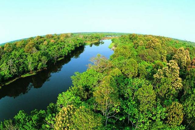 国际森林日 公园里认养树木