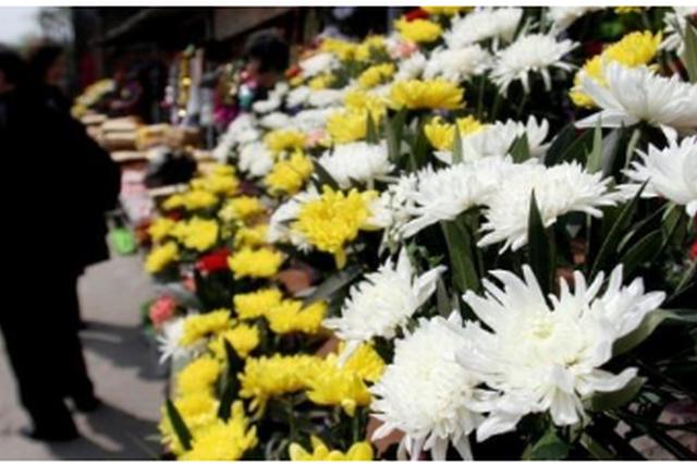贵阳10家公墓清明免费发放30万枝鲜花