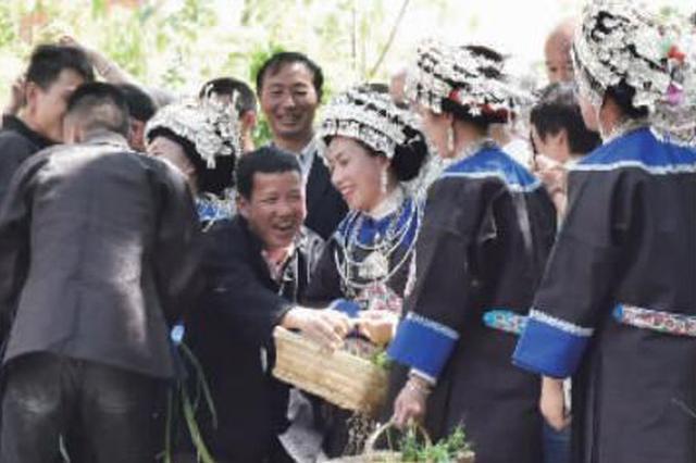 """镇远侗族同胞欢庆""""讨葱节"""""""