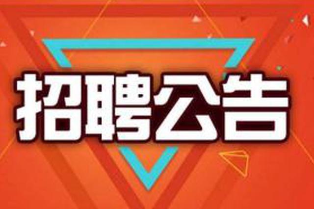 白云区人民法院招聘11人 6月8日-12日报名