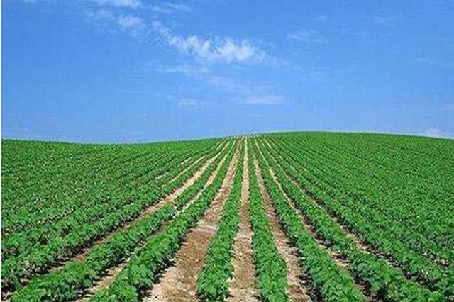 绿色产业与乡村振兴论坛 将发布三大成果