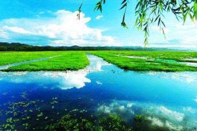 贵州近期晴雨相间 凉爽宜人