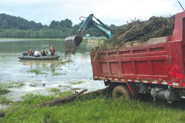 生活垃圾、枯枝腐叶太多 红枫湖清理130立方米垃圾