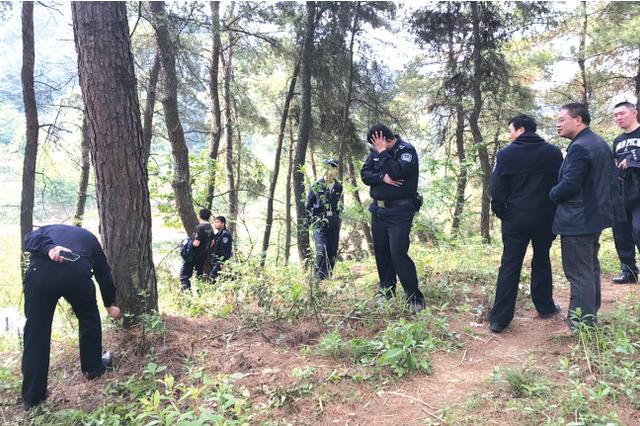 贵阳市白云区艳山红镇毁林案 9名违法嫌疑人被查处