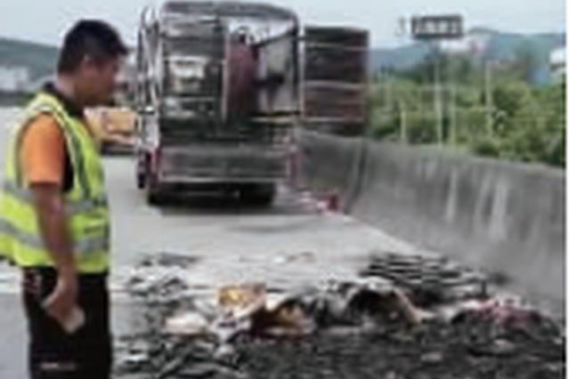 货厢起火一车沙发被烧光 司机怀疑是有人丢烟头所致