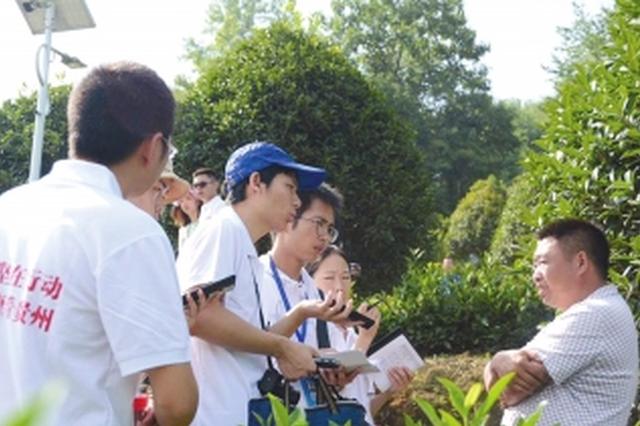 """庆祝改革开放40周年主题采访活动走进""""中国白茶之乡&quo"""