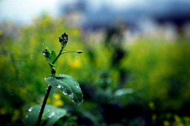 未来一周:贵州以多云天气为主 午后多阵雨
