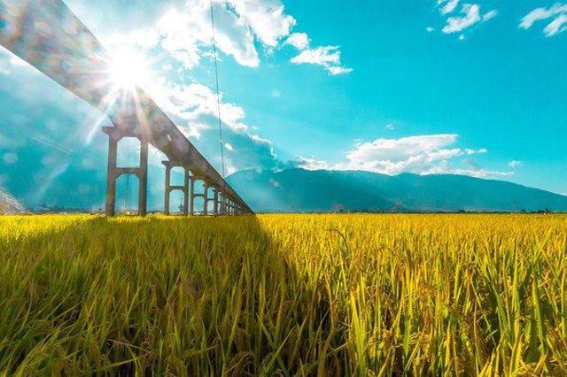 贵州:本周一路阳光 防暑攻略让你轻松度夏