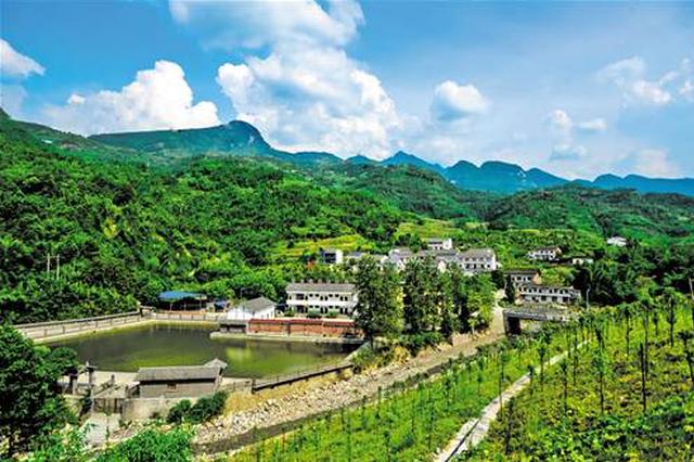 罗汉镇:强化环境治理打造宜居乡村
