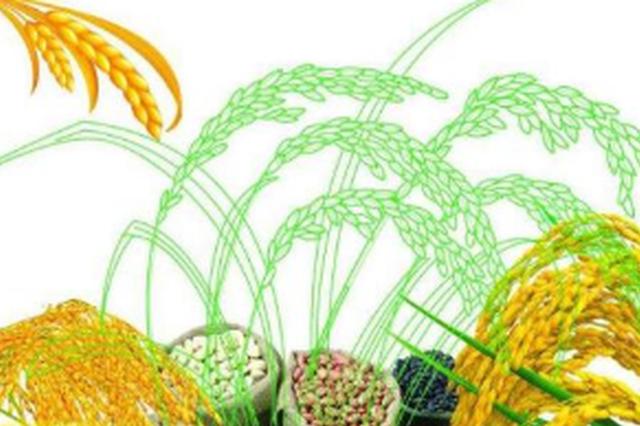 第五屆糧油精品展示交易會將在興義舉辦