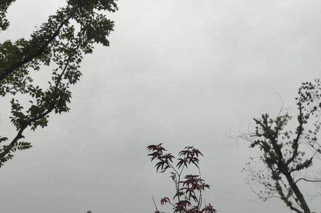 贵州:冷空气来袭 雨水渐起 气温下降