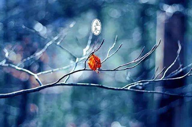 今天立冬 贵阳最低气温6.3℃!明天阳光将回归