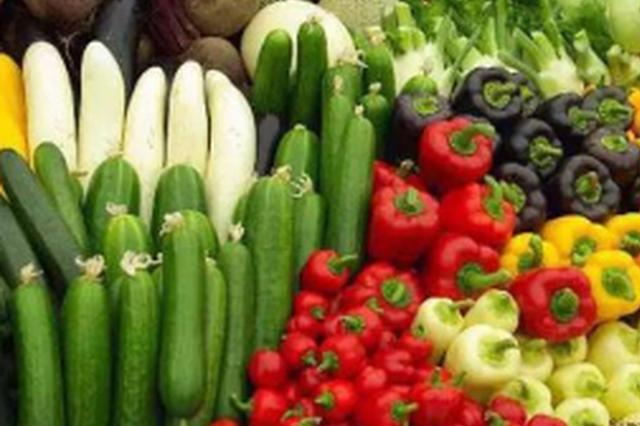 蔗香镇打造农业多产业发展模式
