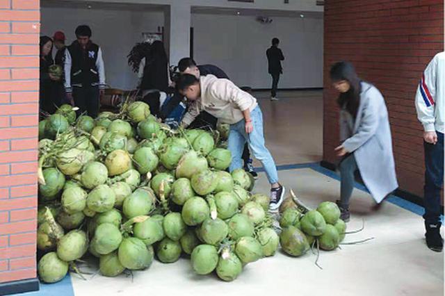 贵州财经大学收到特殊礼物 海南校友会送来5000个椰子