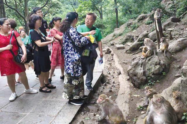 猕猴伤人 医药费报销要等好久?