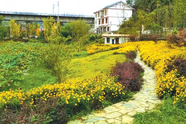 蓬莱仙界:富了农民、美了农村、好了城市