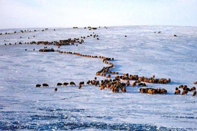 黔西南州多举措保障受灾困难群众温暖安全过冬