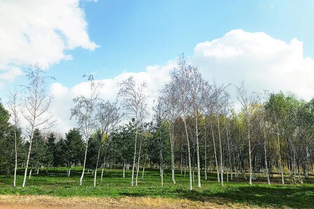 未来三天 贵州大部地区气温升至10℃以上