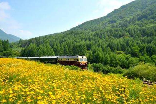 """村民乘上""""水果号""""列车 奔向幸福美好生活"""