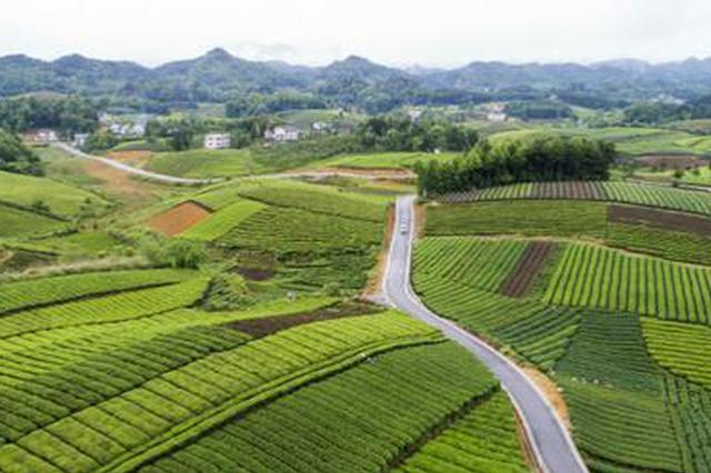 """""""四好农村路""""全国示范县咱们贵州有6个,分别是……"""