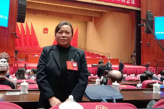 【2019贵州省两会】赵启菊代表:融合发展更有利于农村经济社