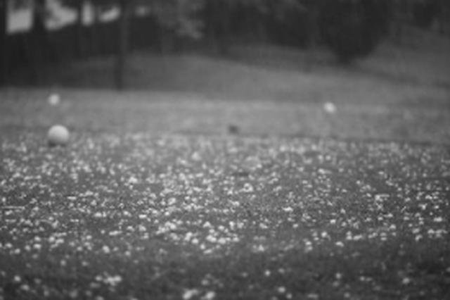 """冻雨混合?#23376;輟?#20912;粒或小冰雹 17日贵阳出现""""怪""""天气"""