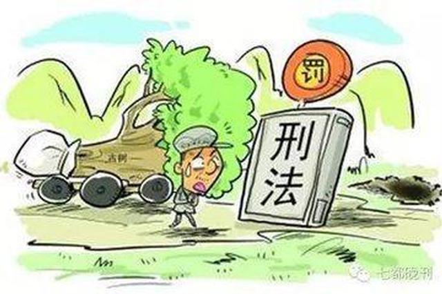 盗伐林木被网上追逃 疑犯处理违章结果自投罗网