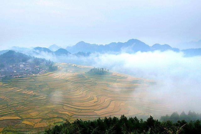 贵州1月空气环境质量:丹寨县最好 万山区最差