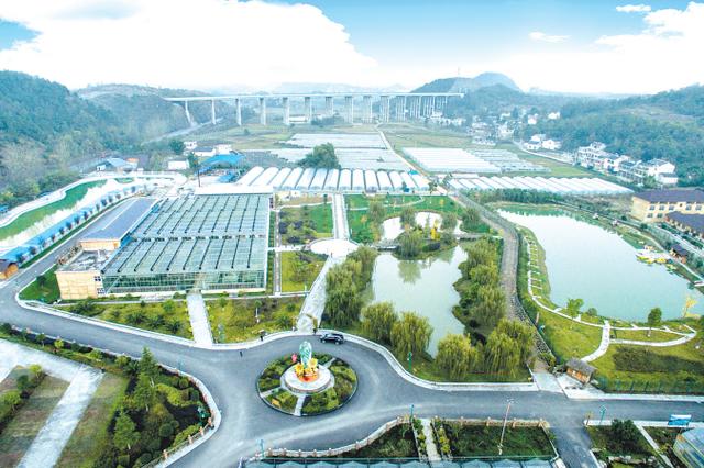 贵州振兴农村经济深刻产业革命一年纪实(上篇)