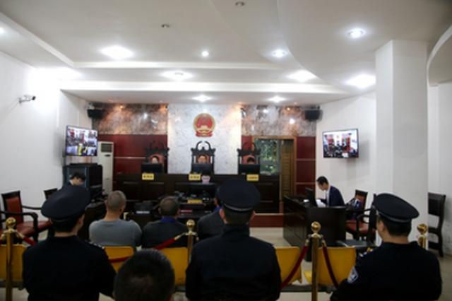 修文法院:四被告人因抢种苗木骗取征收补偿款获刑