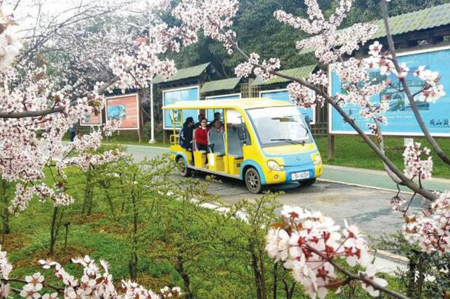 观山湖公园:游园赏花
