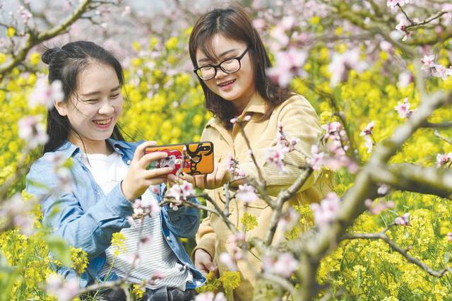 15日-25日 到永乐来赏桃花品美食