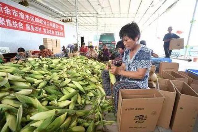 贵州出台方案 进一步加快农村电子商务发展助推脱贫攻坚