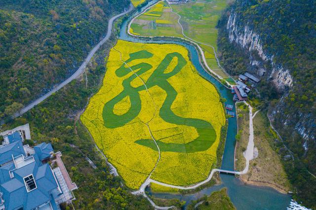 """航拍贵州安顺""""龙字田"""" 镶嵌在大山里的油菜花海"""