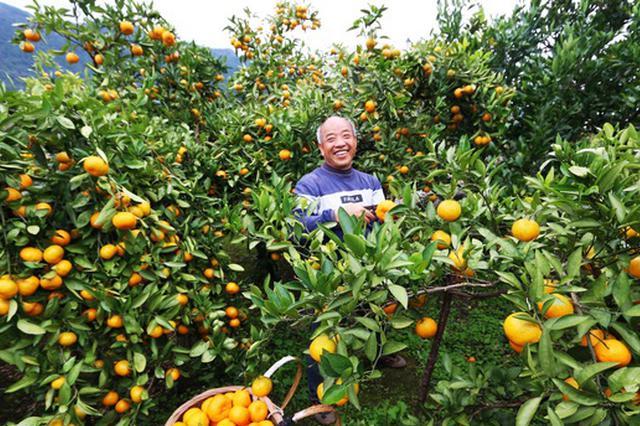 贵州印江:厚植生态发展优势 增强脱贫内生动力
