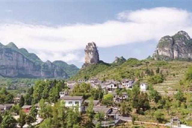 """纳雍县 让人才与产业""""比翼齐飞"""""""