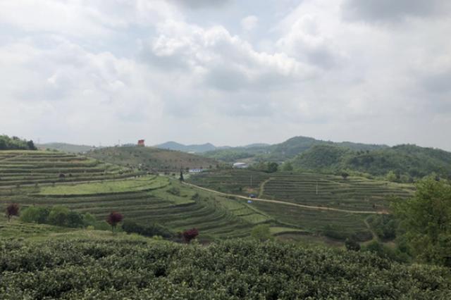瓮安:产业发展助脱贫 乡村生活换新颜