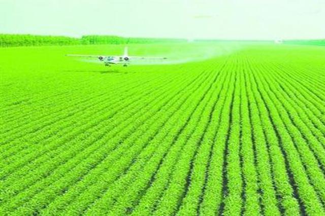 """数博短评丨大数据""""下田"""":为现代农业赋能"""