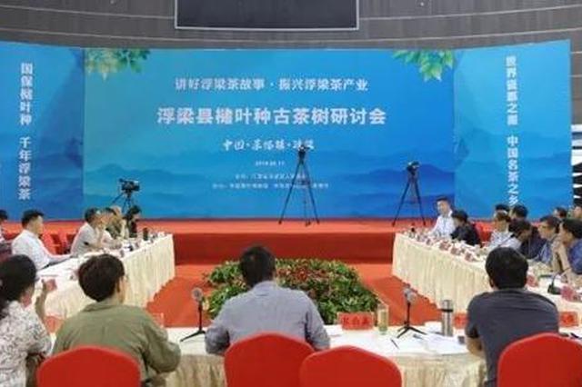 中国古茶树高峰论坛6月27日举办 一起探寻茶的起源