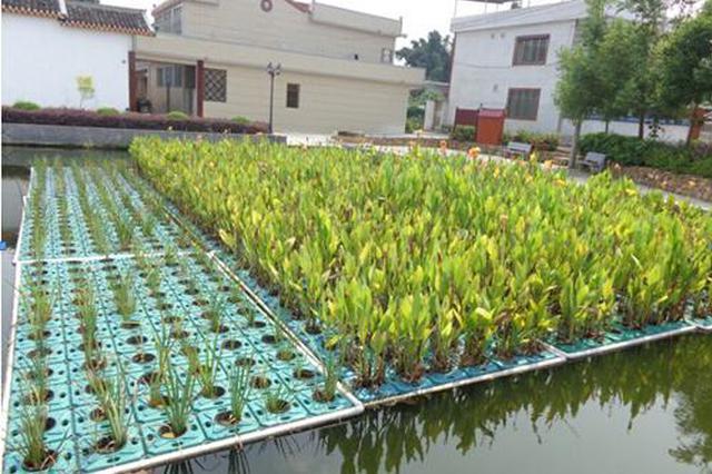贵州出台农村生活污水处理排放标准
