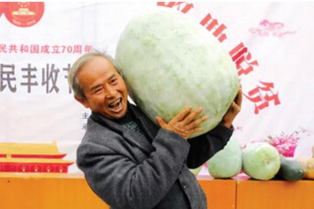 """欢庆""""农民丰收节"""" 福泉选出54斤冬瓜王"""