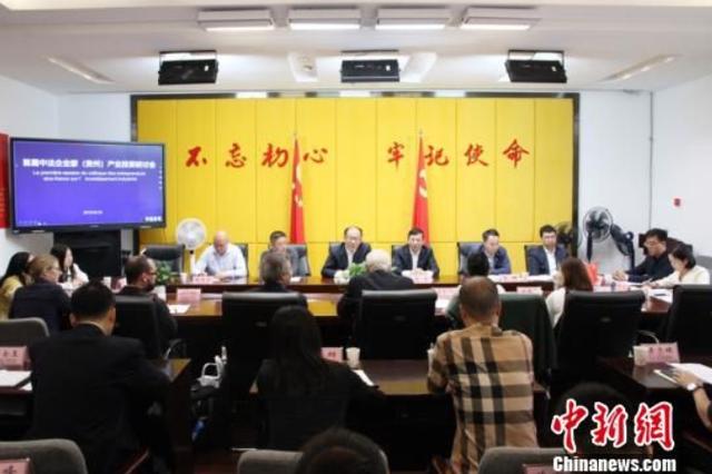 首届中法企业家(贵州)产业投资研讨会召开