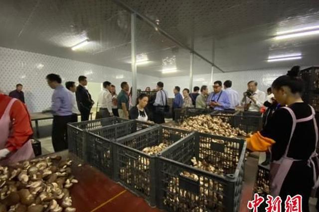 海外华文媒体:贵州变化彰显中国发展和崛起