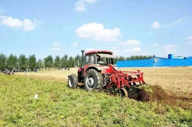 全国建立1316个各类林草科技扶贫示范基地 助力脱贫攻坚