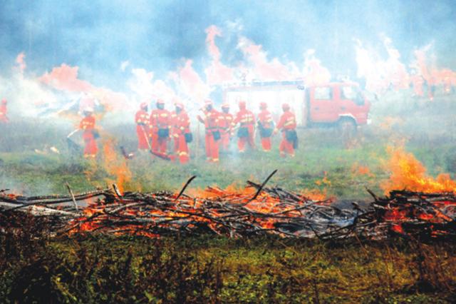 都溪林场突发火灾? 原来这是森林防灭火演练