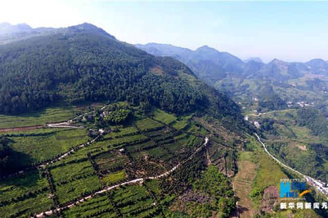 贵州实现电子政务网络省市县乡村五级覆盖