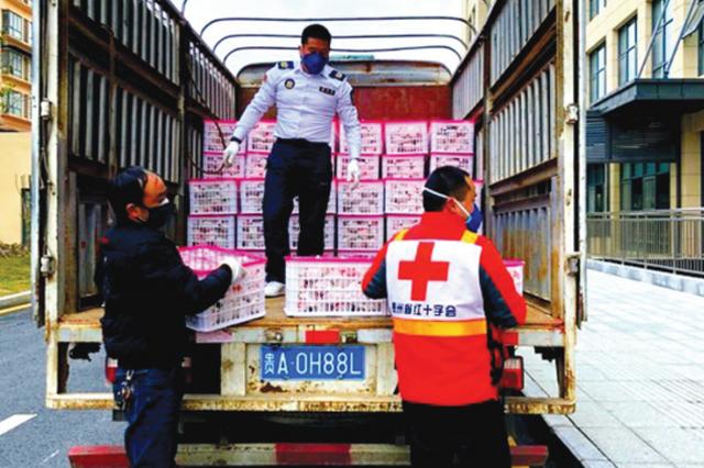 700名红十字志愿者在行动
