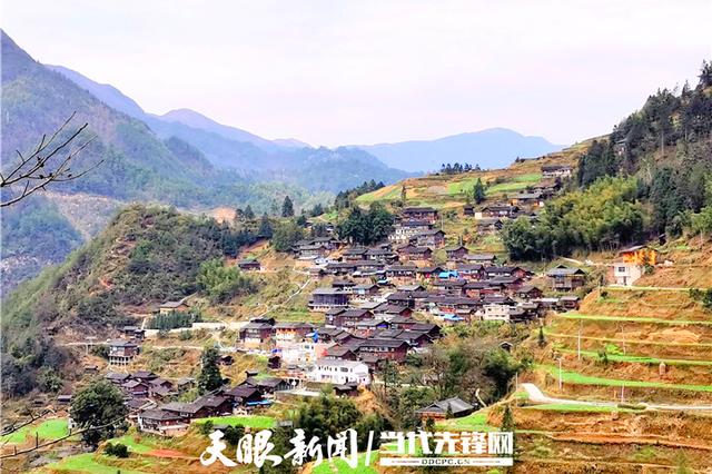 """贵州做足""""活""""字文章 发展壮大村集体经济"""
