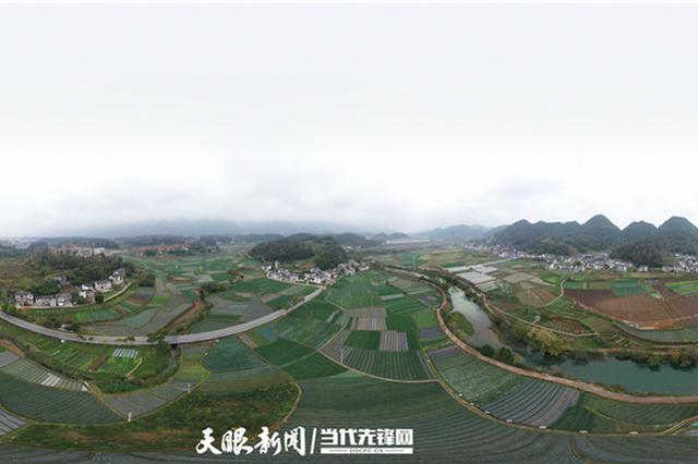 湄潭县官堰坝区:香葱产值节节高